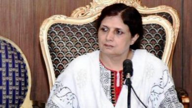 saba mohsin appointed director general radio pakistan news at girdopesh.com