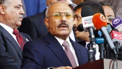 yemen ali abdullah saleh