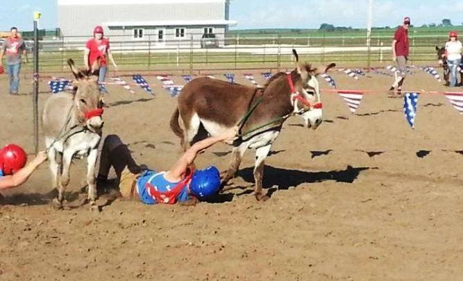 Donkey-Race-3