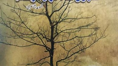 title iqbal arshad