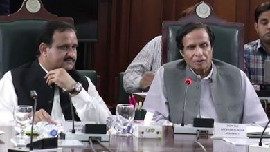 pervaiz elahi and buzdar