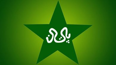 Logo Pakistan's cricket