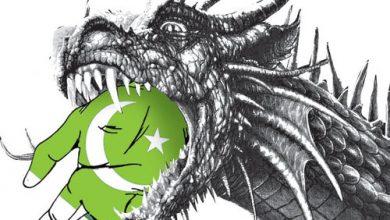 pakistan_in_danger
