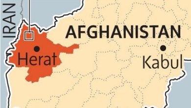 Herat-province afghanistan